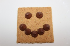 Chocolate Chip Smiley Face